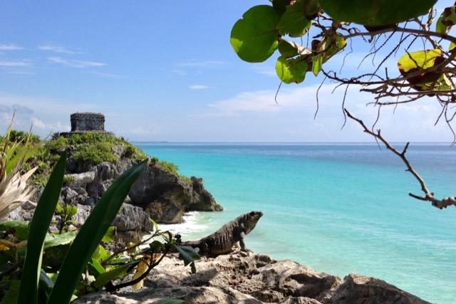 tulum ruins tour caribbean